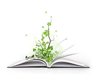Сочинение на тему Анализ стихотворения Фета Добро и зло скачать  Анализ стихотворения Фета Добро и зло сочинение по литературе